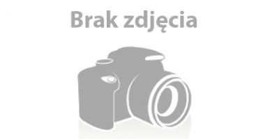 Plaża w Starych Załubicach nad Zalewem Zegrzyńskim