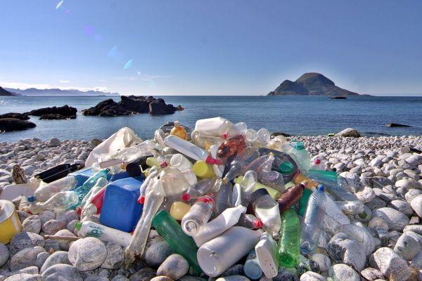 Jak ograniczyć ilość odpadów trafiających każdego dnia do mórz i oceanów?