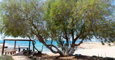 Ammos Kambouri Beach, Ayia Napa, Cypr