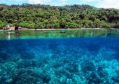 (Sulawesi), Indonezja