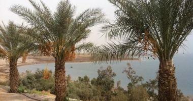Plaża Kalia w Kalya nad Morzem Martwym