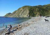 Wellington (North Island), Nowa Zelandia