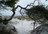 Grayton Beach, Santa Rosa Beach (FL), Stany Zjednoczone