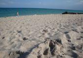 Palm Beach (FL), Stany Zjednoczone