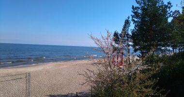 Plaża w Stegnie nad Morzem Bałtyckim