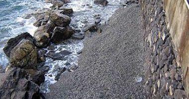 Bau Bau Beach, Santa Margherita Ligure, Włochy