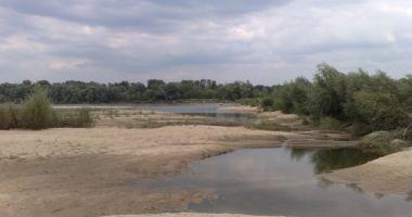 Plaża naturystów na Wale Zawadowskim w Warszawie nad Wisłą