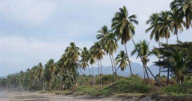Playa Linda, Ixtapa/Zihuatanejo, Zihuatanejo, Meksyk