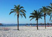 Port d'Alcúdia, Majorka, Hiszpania