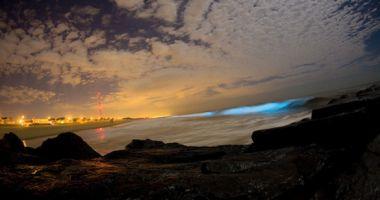 Plaże nad Bioluminescencyjną Zatoką na Wyspie Vieques