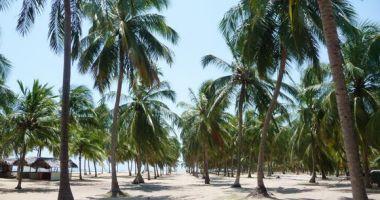 Gunga Beach, Maceio, Brazylia