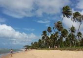 Praia do Forte (Bahia), Brazylia