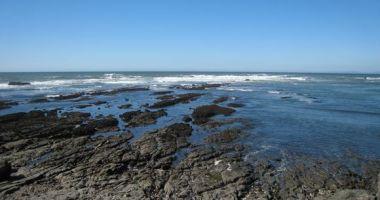 Fitzgerald Marine Reserve, Moss Beach, Stany Zjednoczone