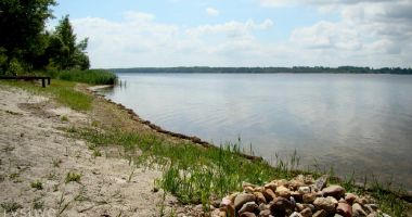 Plaża naturystów w Dzierżnie nad Jeziorem Dzierżno Duże