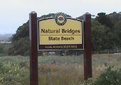 Santa Cruz (CA), Stany Zjednoczone
