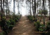 Ratnagiri, Indie