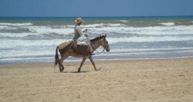 Pirambu beach, Aracaju, Brazylia