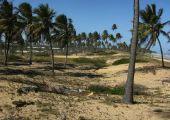 Imbassai (Bahia), Brazylia